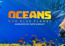 Oceans Our Blue Planet (2012) 2160p